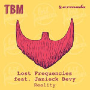 lost frequencies – reality